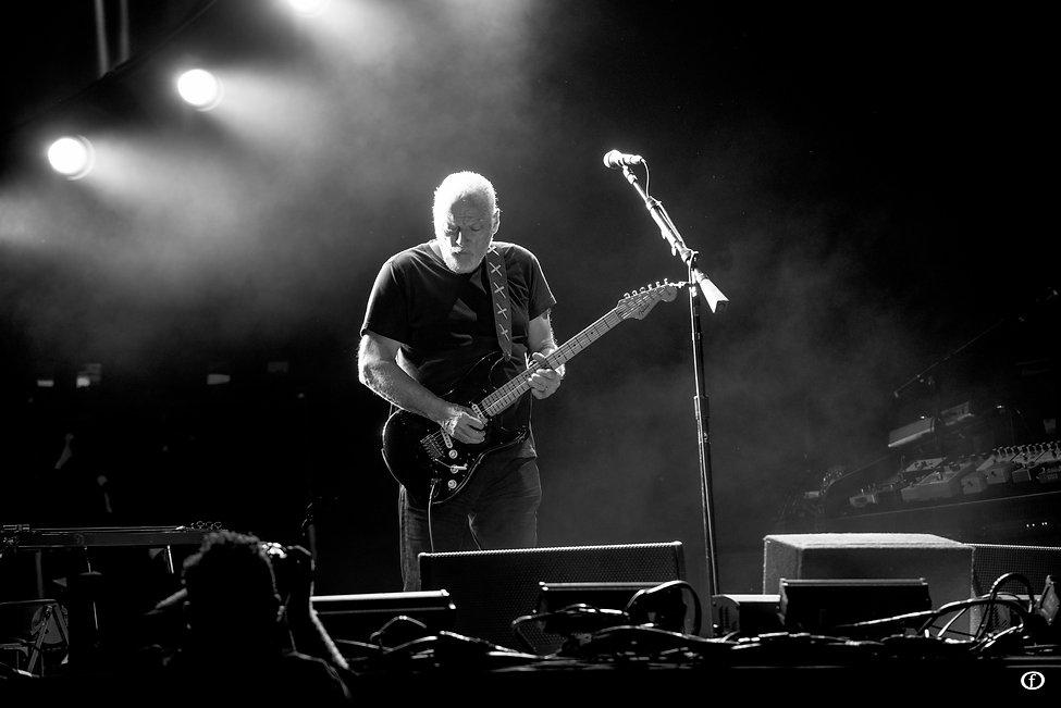 David Gilmour-4005.jpg