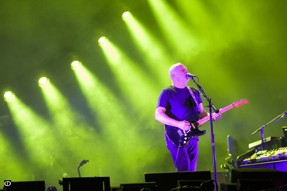 David Gilmour 2015-4498.jpg