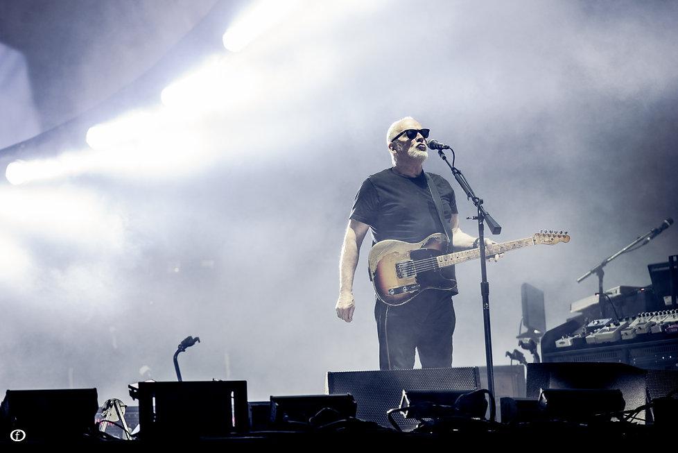 David Gilmour 2015-4740.jpg