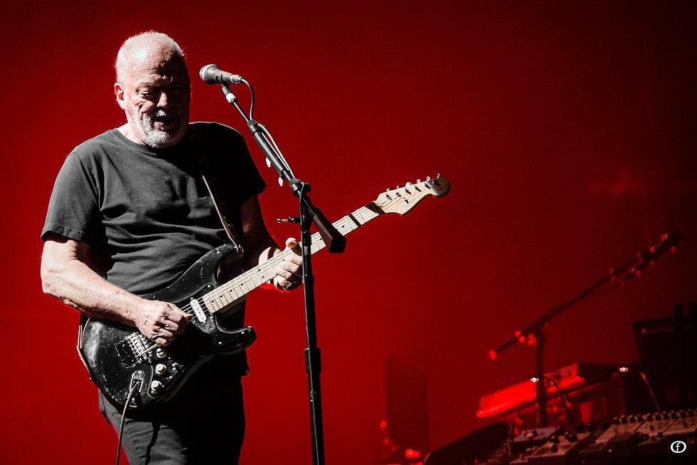 David Gilmour 2015-4492.jpg