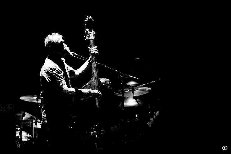 David Gilmour 2015-3946.jpg
