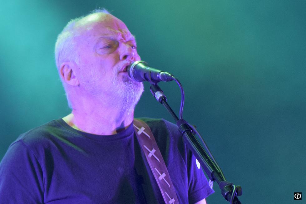 David Gilmour 2015-4499.jpg