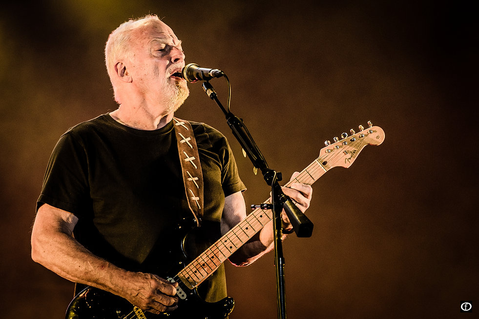 David Gilmour 2015-3985-2.jpg