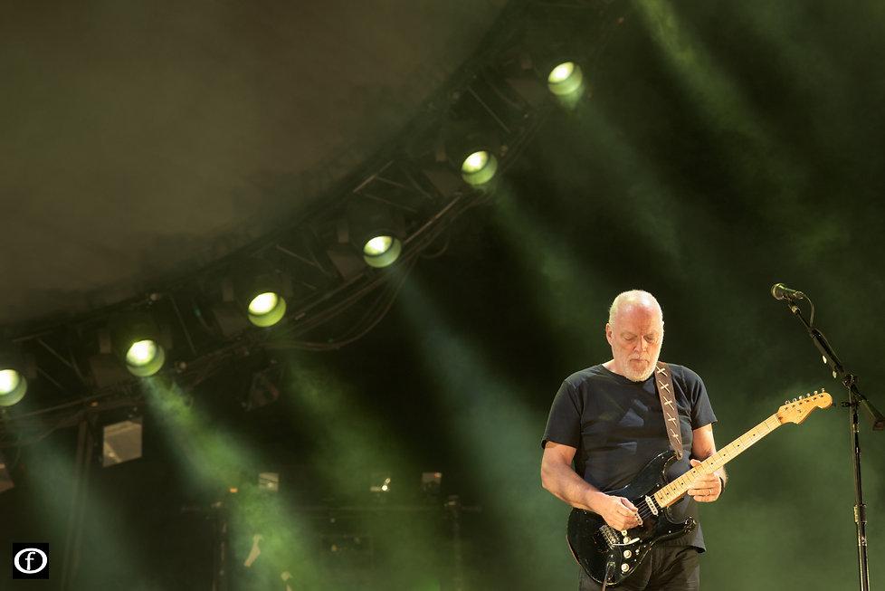 David Gilmour 2015-4455.jpg