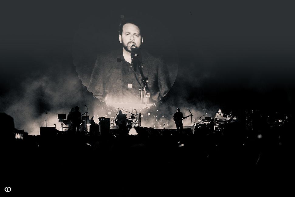 David Gilmour 2015-4817.jpg
