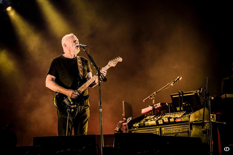 David Gilmour Chile3985.jpg