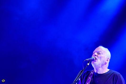 David Gilmour 2015-4514-2.jpg