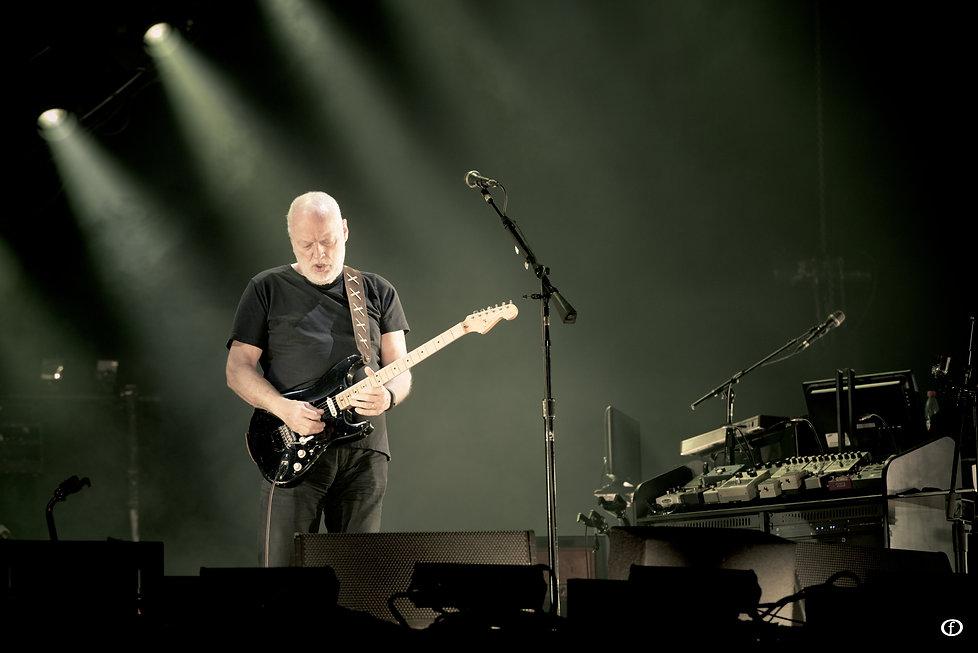 David Gilmour 2015-4636.jpg