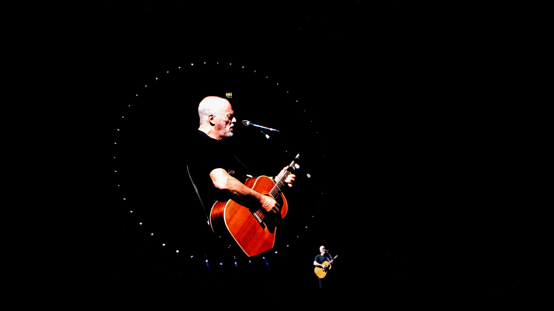 David Gilmour 2015-3934.jpg