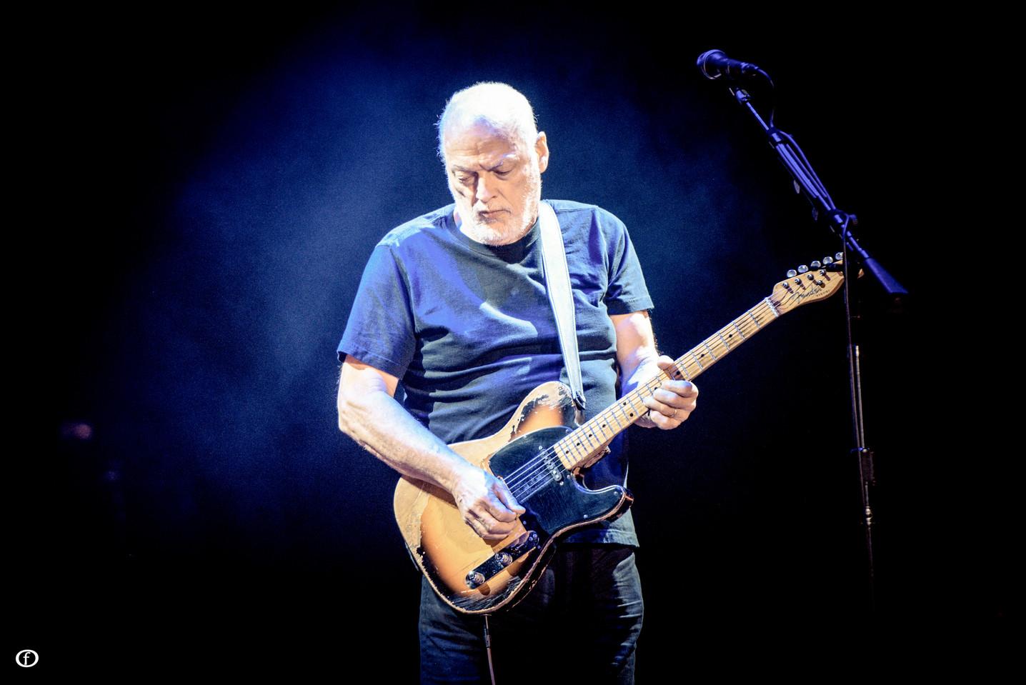 David Gilmour 2015-4361.jpg