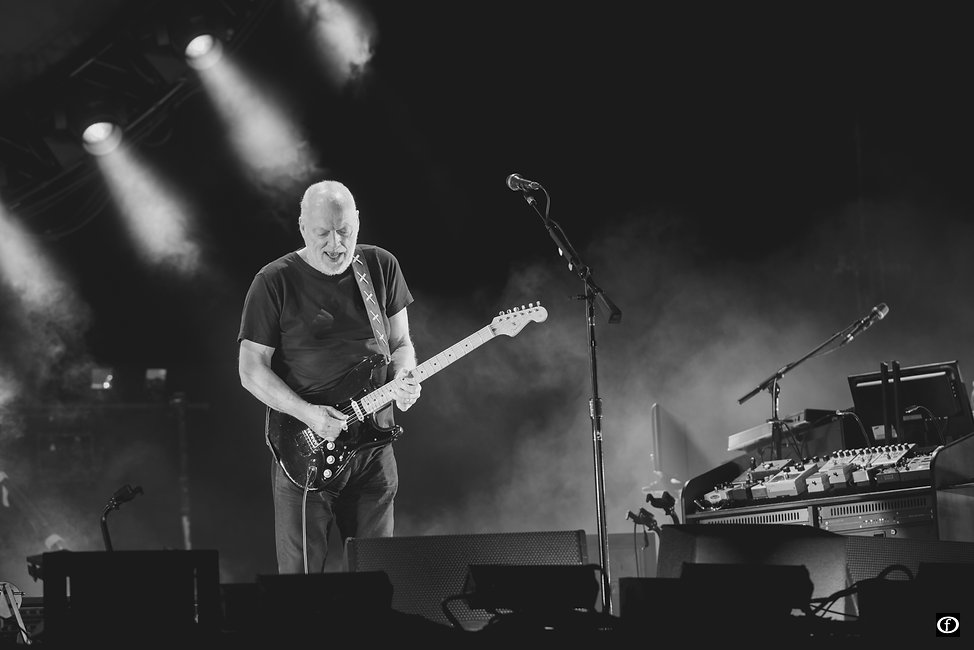 David Gilmour 2015-4441.jpg