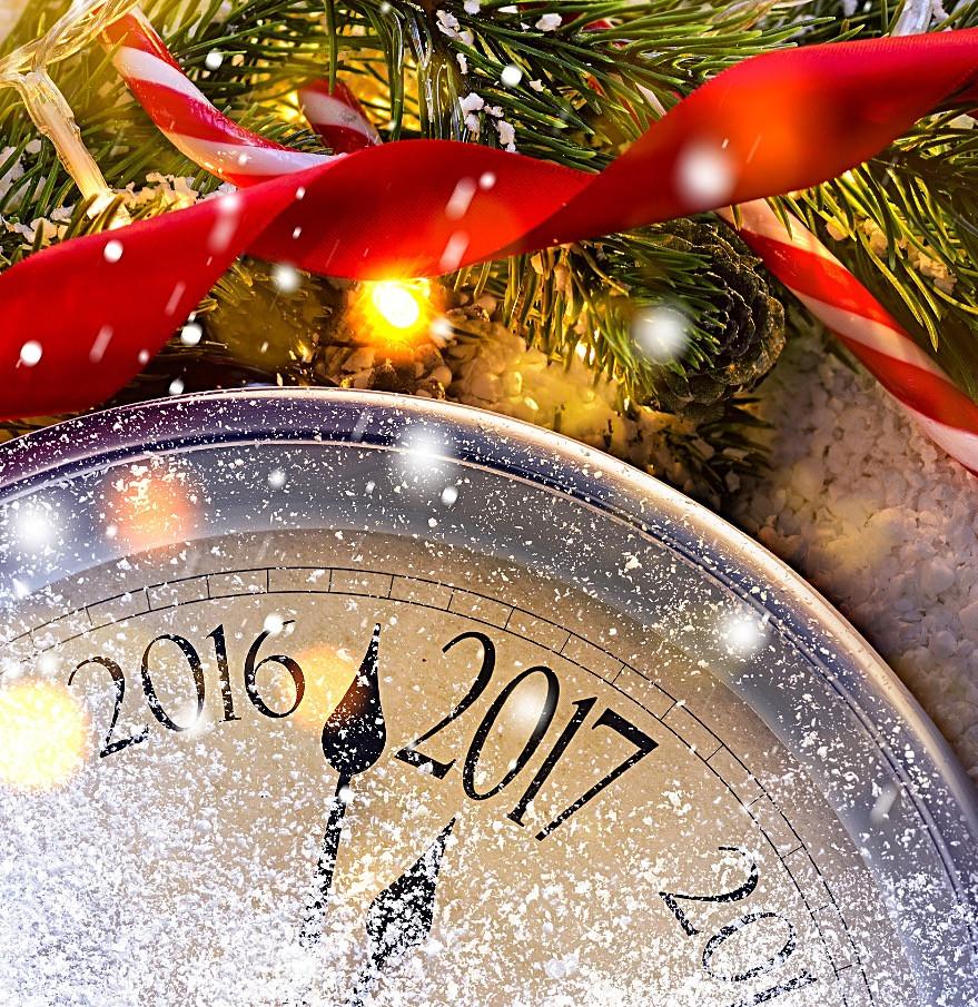 С Новым Годом! | адвокат | Малиновская Екатерина