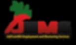 JEMS logo png.png
