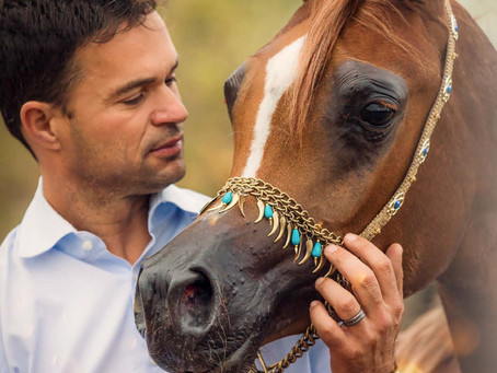 Catching Up with Halter Handler Sandro Pinha