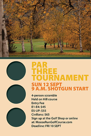 golf par 3 tournament.jpg
