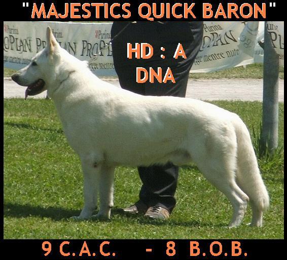 CH Majestics Quick Baron
