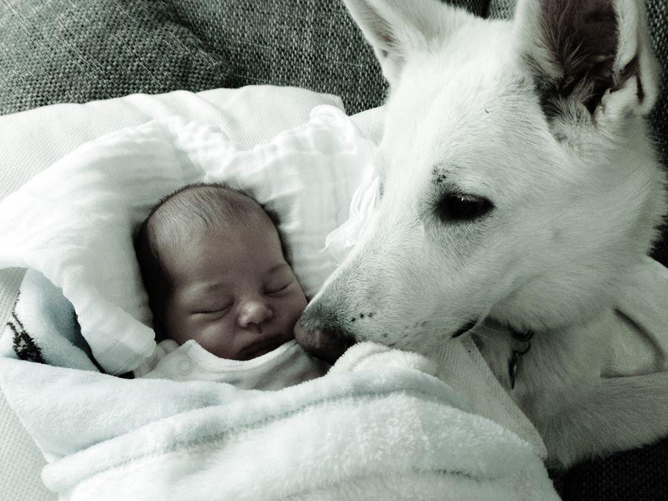 """Knox mit """"seinem"""" Baby"""