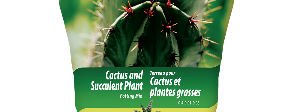 Terreau cactus et plantes grasses 5L.