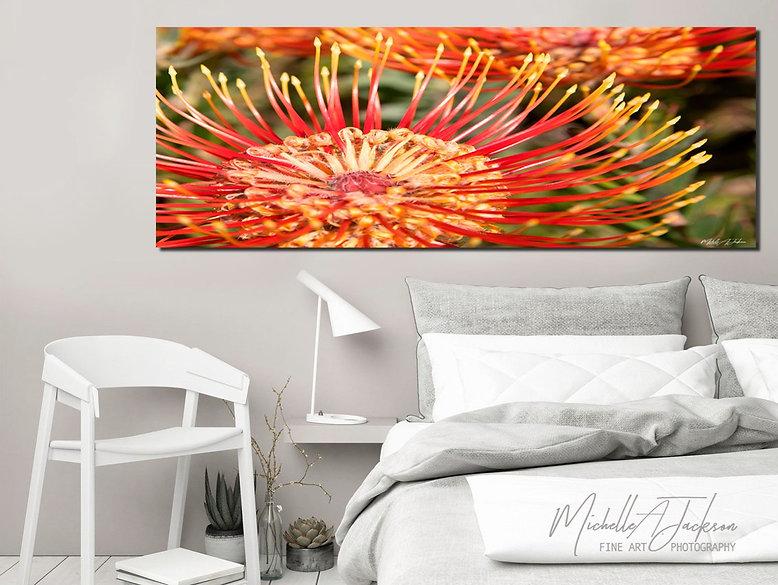 Hawaiian Firework - Protea
