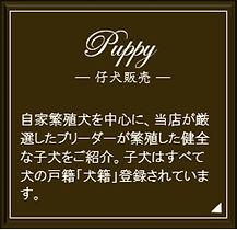 子犬販売アイコン.jpg