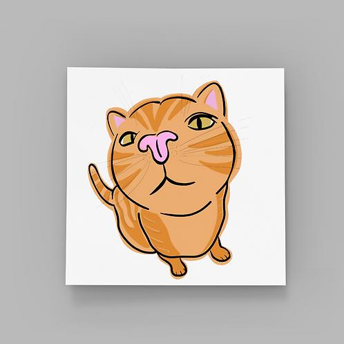 Cat Kiss - Ginger