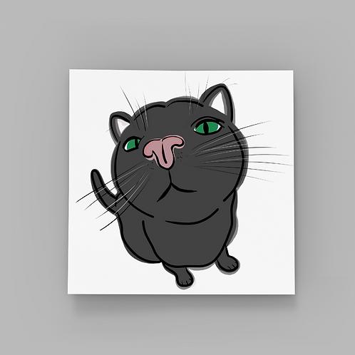 Cat Kiss - Black