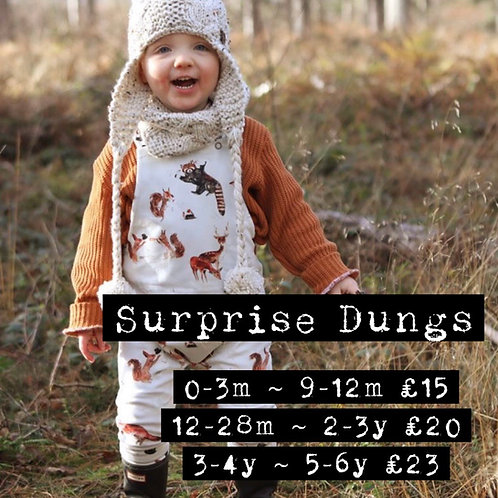 Surprise Dungarees