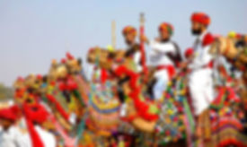 Hundred of Camels will march by in procession at the Pushkar Mela