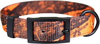 Mossy Oak Blaze Orange Camo Collar DF