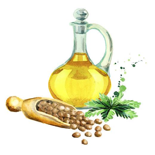 Hemp oil and seeds. Watercolor.jpg