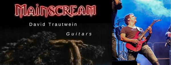 David Trautwein - Guitars.jpg