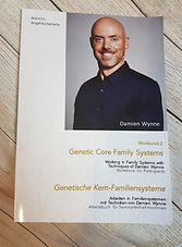 Arbeitsbuch Light Grids - Damien Wynne. Genetische Kern-Familie