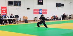 Coupe Rhône-Alpes Kung-Fu 2017