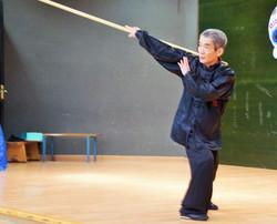 Stage Kung-Fu Choy Lee Fut - 2017