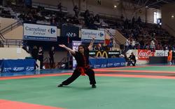 Championnat France Kung-Fu 2017