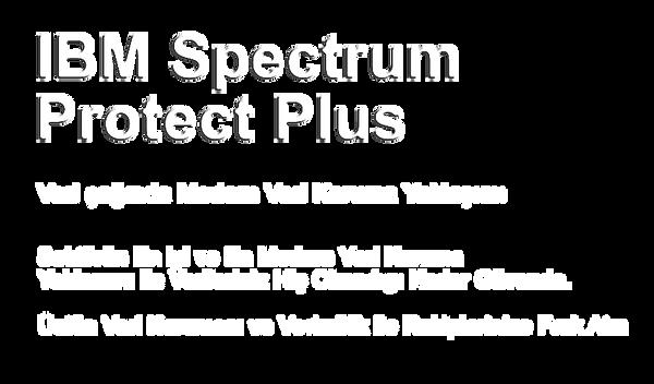 spectrum yazı.png