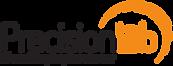Precsolab logo