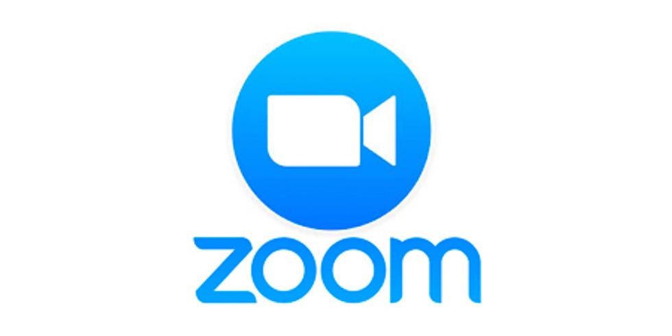 Youth Gaming Meet Up  https://zoom.us/j/92105563665