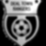 dtrfc_banner_badge.png
