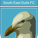 gulls.png