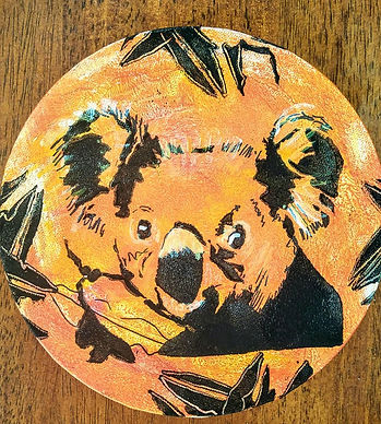Bruce koala.jpg