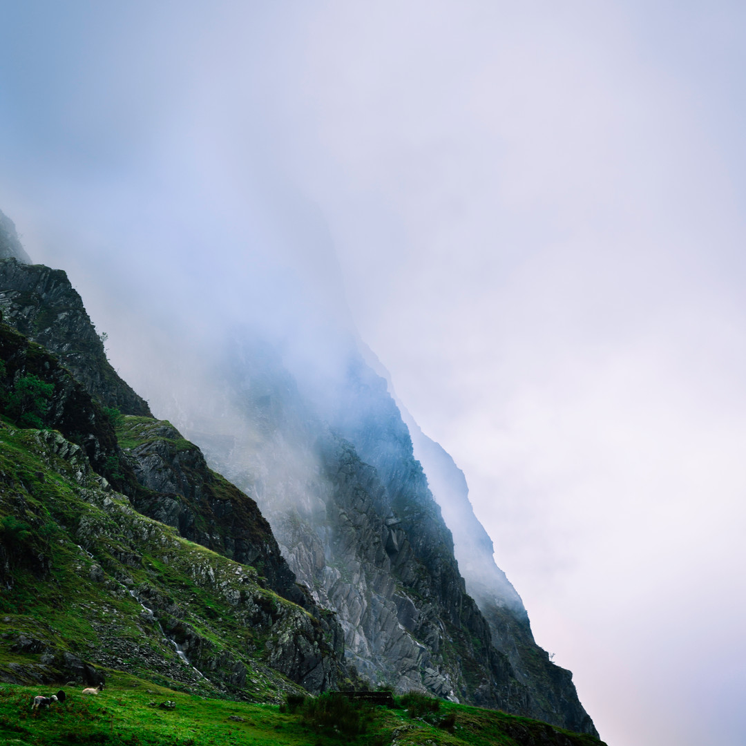 Polar Mist