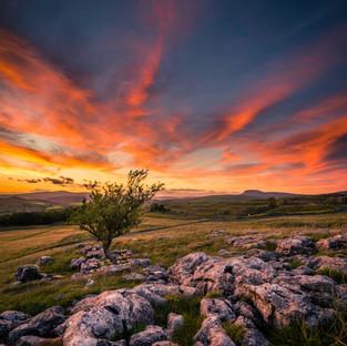 Red Night, Shepherd's Delight