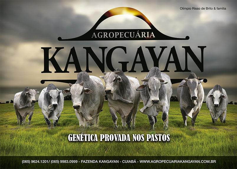 Anúncio Agropecuária Kangayan
