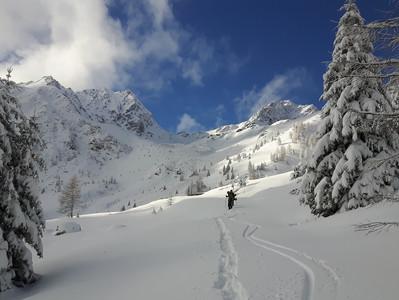 Ciaspolata con guida all'anello delle Malghe delle Maddalene, in Val Di Non
