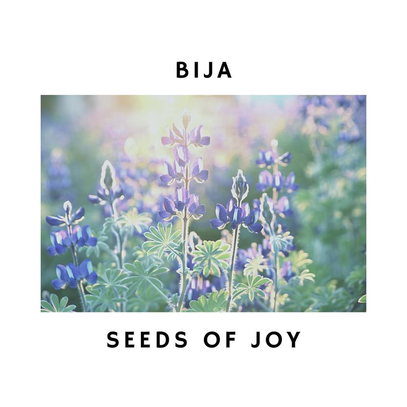 Bija - planting seeds of joy with yoga