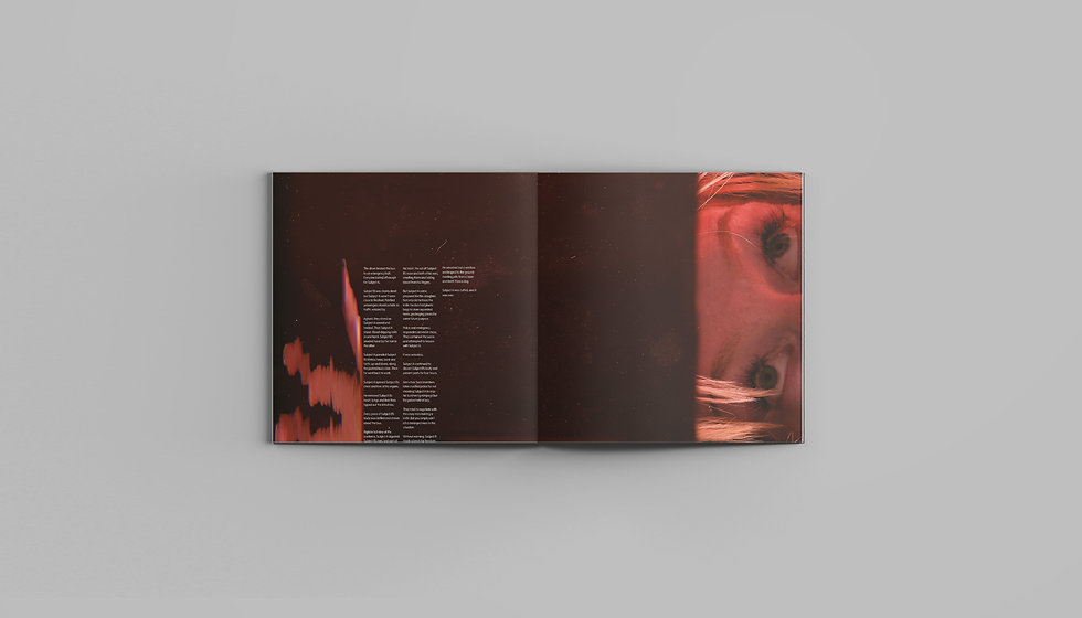 fact-and-fiction-magazine-showcase-sprea