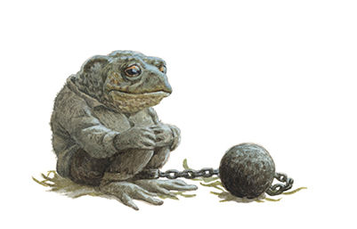 Toad looks downcast as he contemplates his imprisionment. He sits on straw and is manacled to a ball and chain. Illustration by Chris Dunn for 'The Wind In The Willows'. Whimsical animal art.