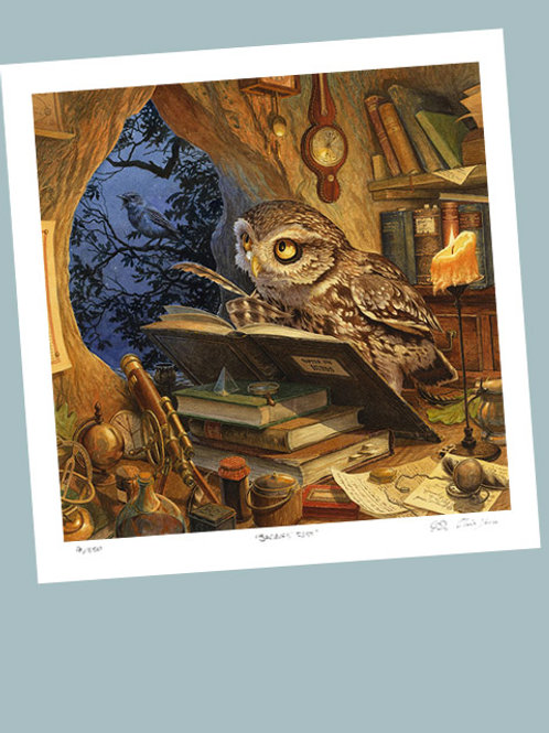 'A Wise Old Owl' Signed Limited Edition Print