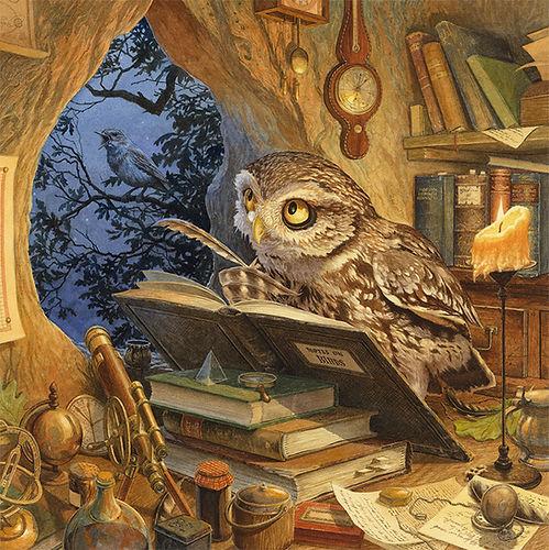 A Wise Old Owl Chris Dunn Illustration Nursery Rhyme Animals